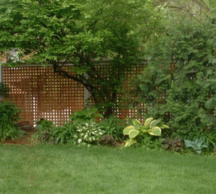 AFC Rochester - Wood Fencing, 1032 Lattice Fence