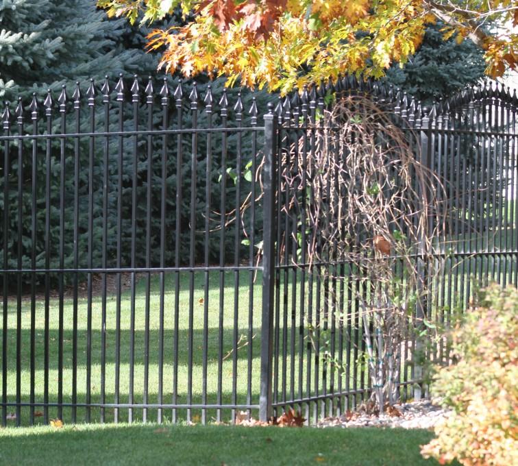 AFC Rochester - Custom Iron Gate Fencing, 1220 Quad Flare Overscallop Ornamental Iron Photo