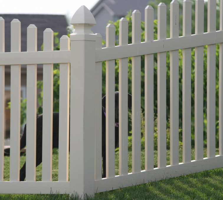 AFC Rochester - Vinyl Fencing, 4' overscallop picket 550